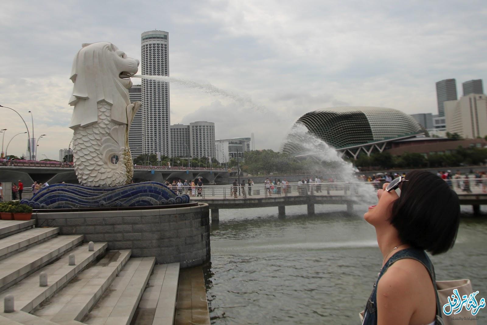أهم 6 انشطة في منتزه الميرليون بارك سنغافورة