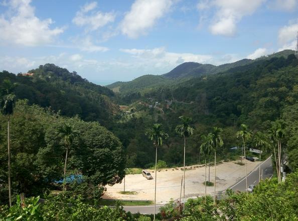 افضل 3 أنشطة في حديقة الفواكه في بينانج ماليزيا | حديقة الفواكة فى بينانج
