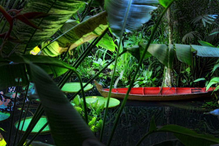 أفضل 6 أنشطة في حديقة التوابل في بينانج ماليزيا