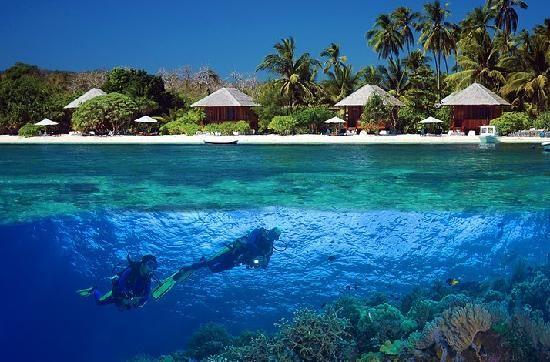 Îles Wakatobi en Indonésie