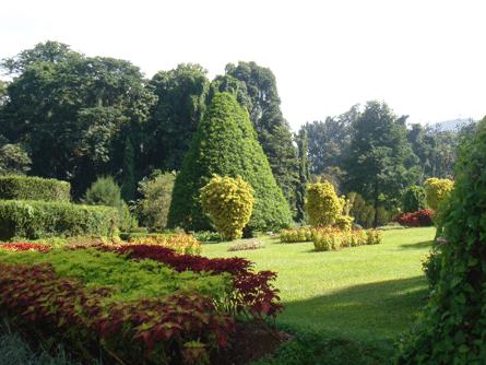 الحديقة النباتية الملكية فى كاندى